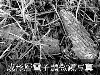 成形層電子顕微鏡写真