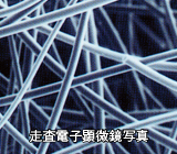 繊維状活性炭 走査電子顕微鏡写真