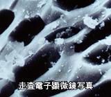 ヤシガラ活性炭 走査電子顕微鏡写真